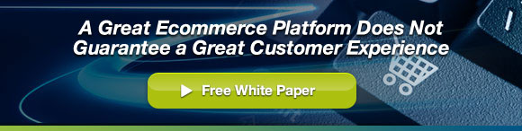 A Great Ecommerce Platform Does Not Guarantee a Great Customer Experience - Free White Paper