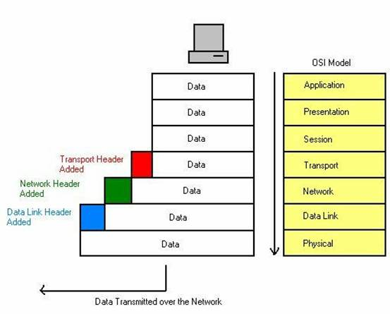 understanding the osi model The open systems interconnection basic reference model (osi model) is an abstract description for network protocol design.