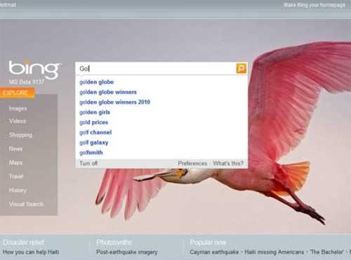 Bing-autosuggest